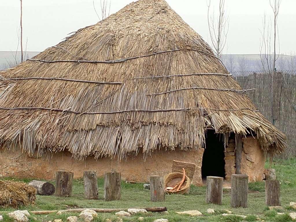 Cabaña Parque Arqueologico