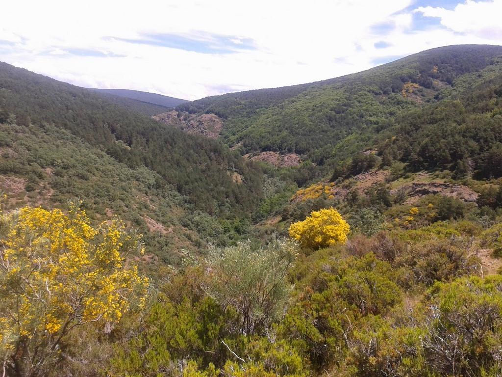 Valle en Palazuelos